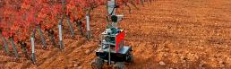 robotics in food industry