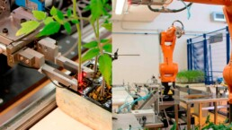 application of robotics in agriculture